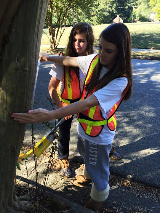 Volunteers taking tree measurements for Urban Offsets, Wilson, NC.
